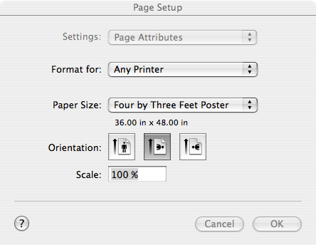 Page Setup Options select paper size and orientation